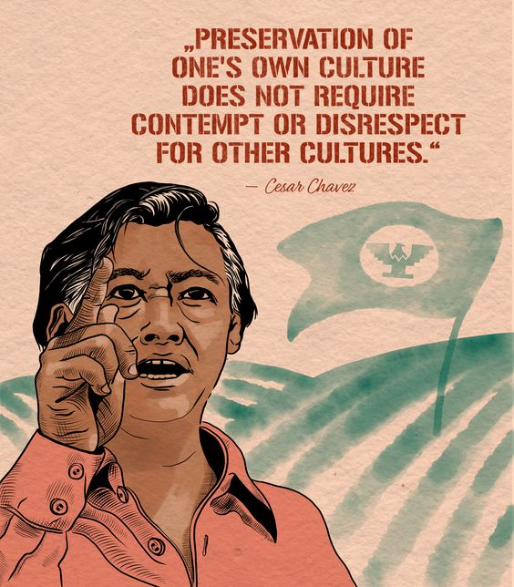Laura Finke Illustration – Human Rights Cesar Chavez